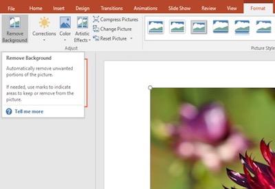 Hintergrund vom bild entfernen powerpoint